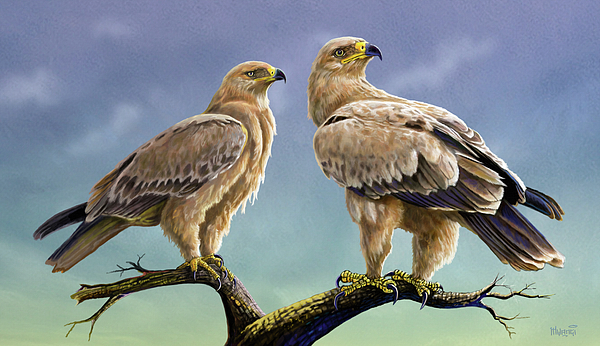 Tawny Eagles Painting
