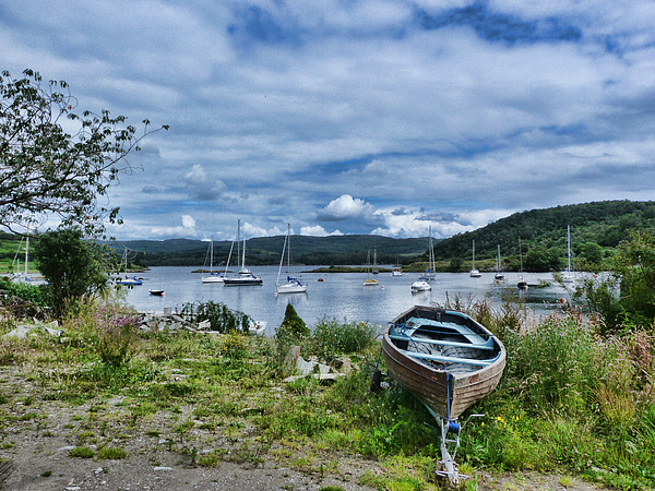 Lynn Bolt - Tayvallich Harbour