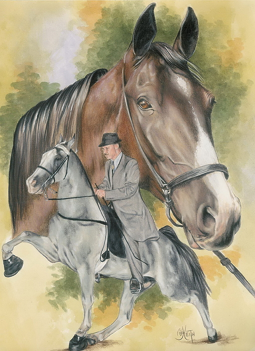 Barbara Keith - Tennesse Walking Horse