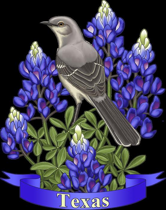 Texas State Mockingbird And Bluebonnet Flower Onesie For