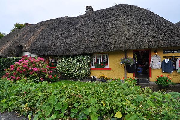 Herman Hagen - Thatched cottage