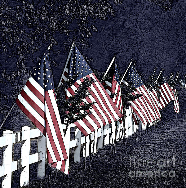 Sherry Hallemeier - The American Flags