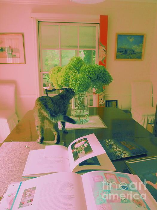 Nancy Kane Chapman - The Cat and the Hydrangea