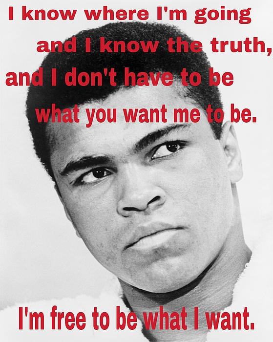 Paulo Guimaraes - The Champ Muhammad Ali