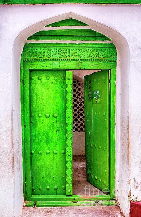 Amyn Nasser - The Green Door