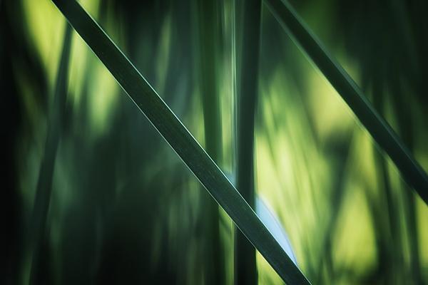 Hans Zimmer - The Ides of Marsh