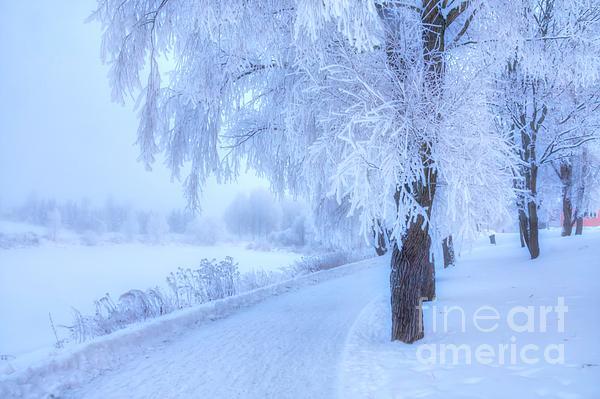 Veikko Suikkanen - The magic of winter 4