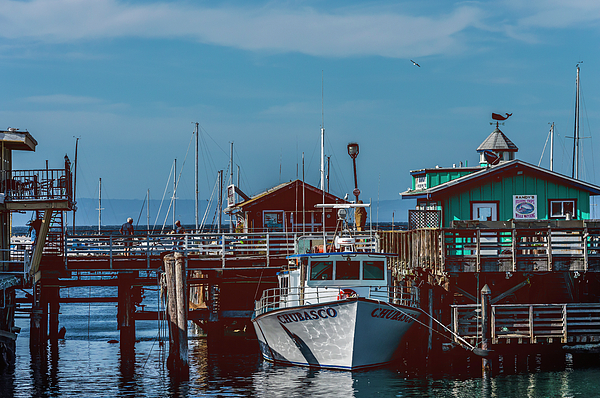 Mary Chris Hines - The Marina at Monterey