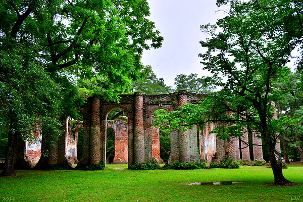 Lisa Wooten - The Old Sheldon Church Ruins 2