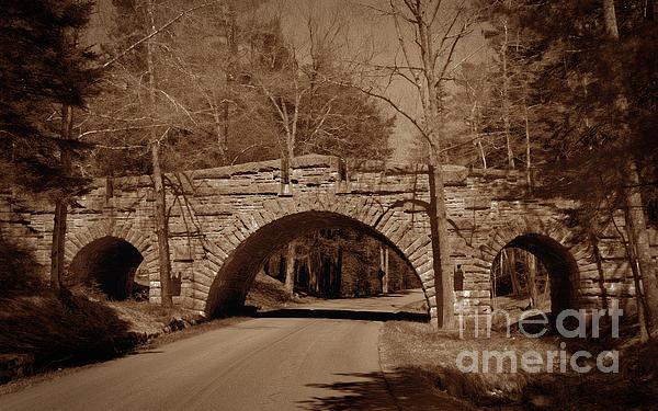 Skip Willits - The Old Stone Bridge