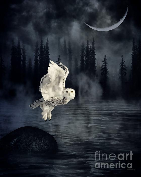 Heather King - The owl and her mystical moon