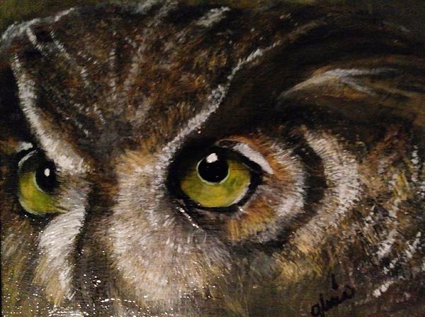 Gr B - The Owl