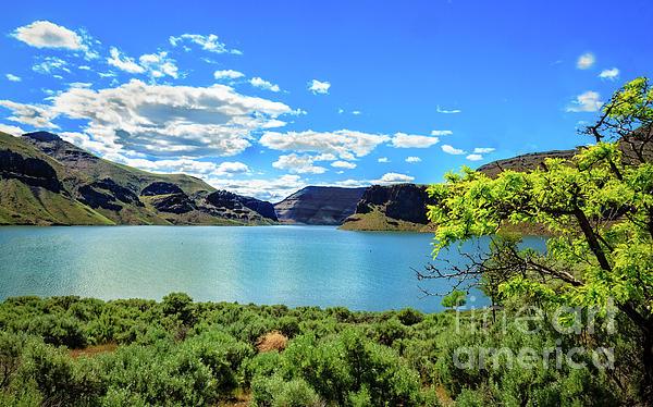 Robert Bales - The Owyhee Reservoir