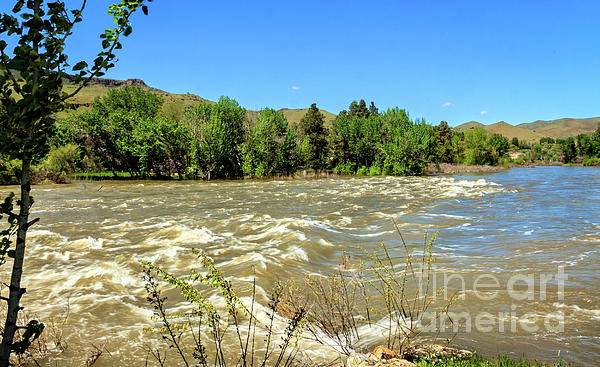 Robert Bales - The Raging Payette River