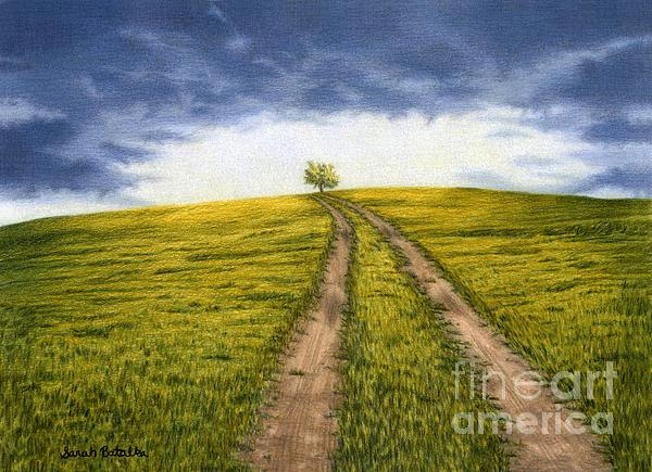 Sarah Batalka - The Road Less Traveled