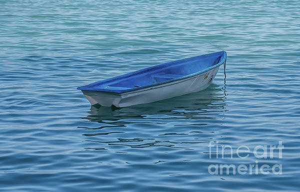 Michelle Meenawong - The Small Dinghy