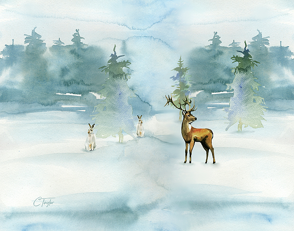 Colleen Taylor - The Soft Arrival of Winter