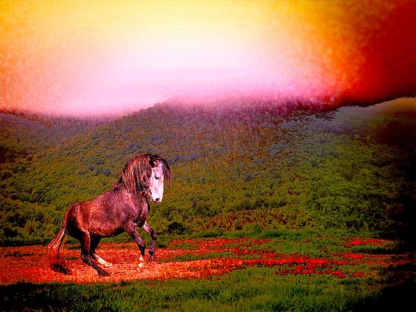 Patricia Keller - The Stallion Has Faith