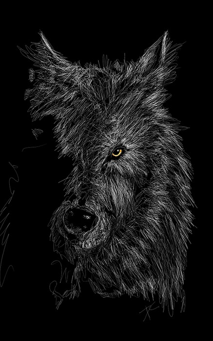 The Wolf In The Dark Digital Art