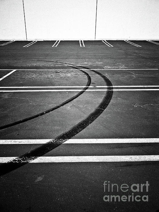 Fei Alexander - The World of Lines