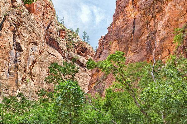 John M Bailey - The Zion Canyon Narrows