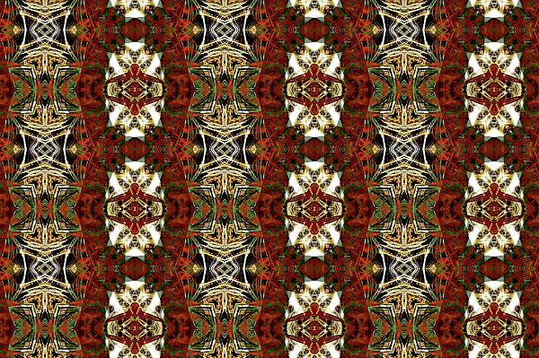 Thorny Red Chains Digital Art