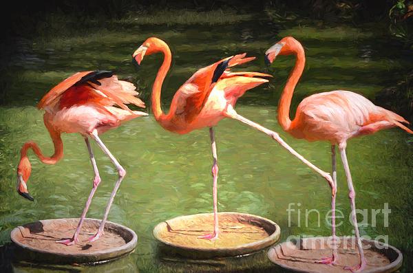 Judy Wolinsky - Three Flamingos