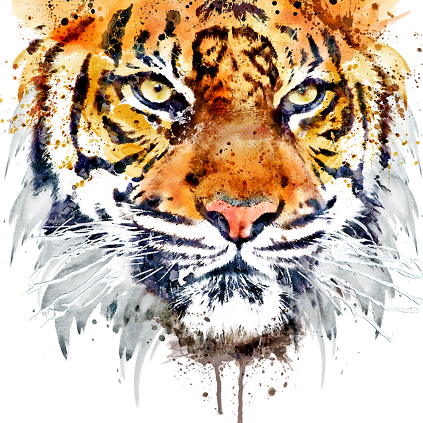 Tiger Face Close Up Throw Pillow For Sale By Marian Voicu