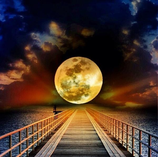 Elizabeth  Doran - To The Moon