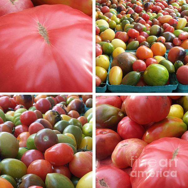 GJ Glorijean - Tomatoes Photo Tile