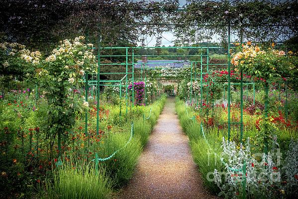 Liesl Walsh - Trellis Path at Giverny, France