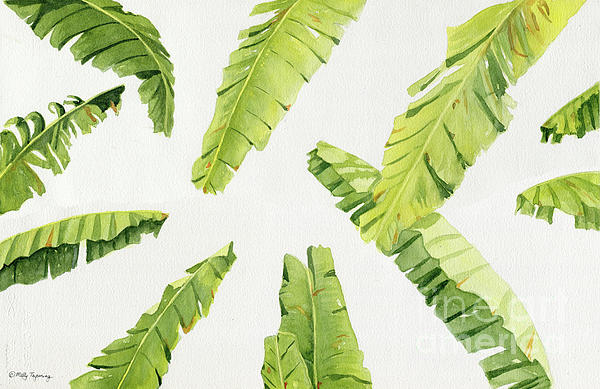 Melly Terpening - Tropical Banana Leaves