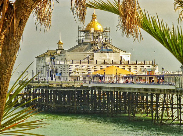 Connie Handscomb - Tropical Eastbourne