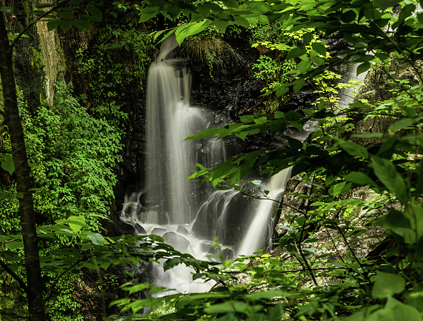 Skyelyte Photography by Linda Rasch - Tropical Rainforest in New England, Greystone Waterfall Plymouth, Connecticut USA