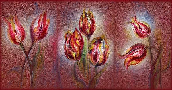 Harsh Malik - Tulips - Red Beauty
