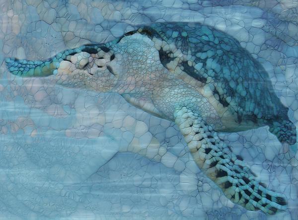 Jack Zulli - Turtle - Beneath The Waves Series