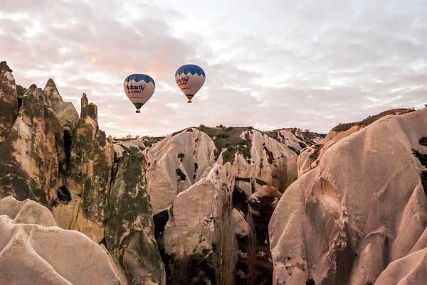Phyllis Taylor - Twin Balloons