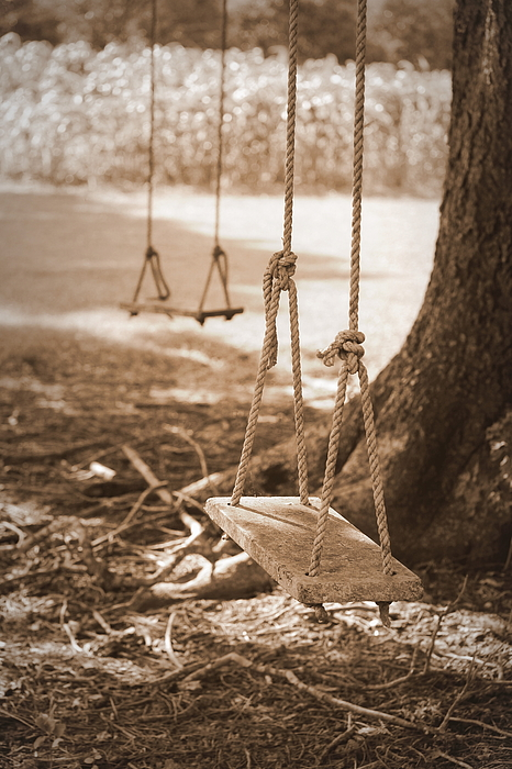 Beth Vincent - Two Swings - Sepia