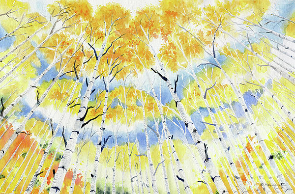 Melly Terpening - Under The Autumn Birch Forest