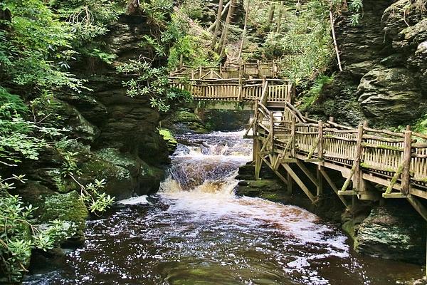 Karen Silvestri - Upper Gorge At Bushkill Falls