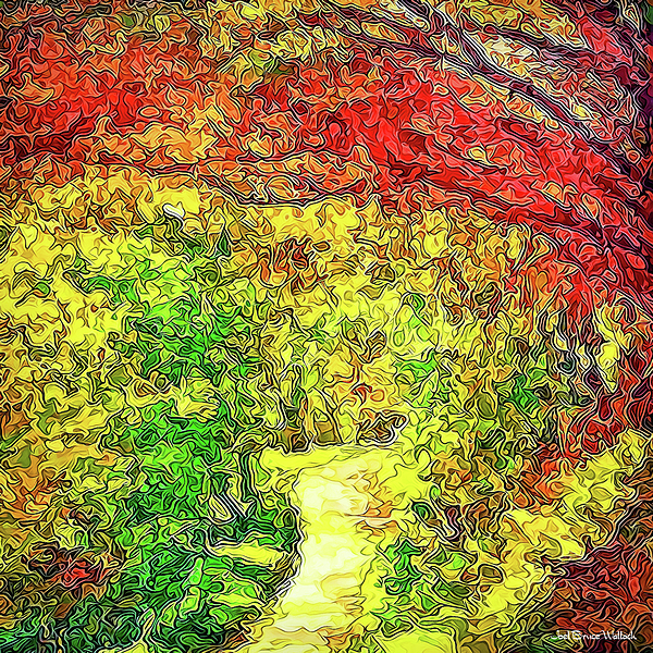 Joel Bruce Wallach - Vibrant Garden Pathway - Santa Monica Mountains Trail