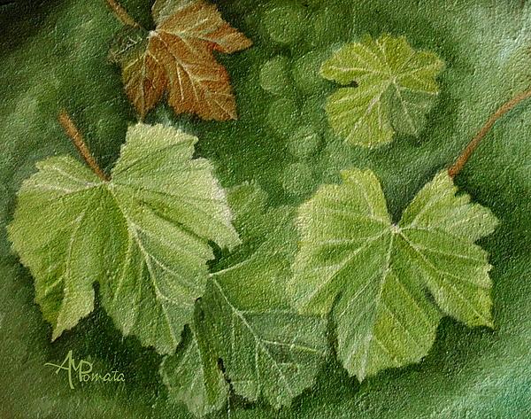 Angeles M Pomata - Vine leaves