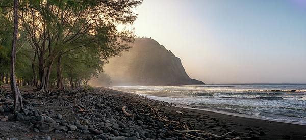 Susan Rissi Tregoning - Waipio Beach Panorama