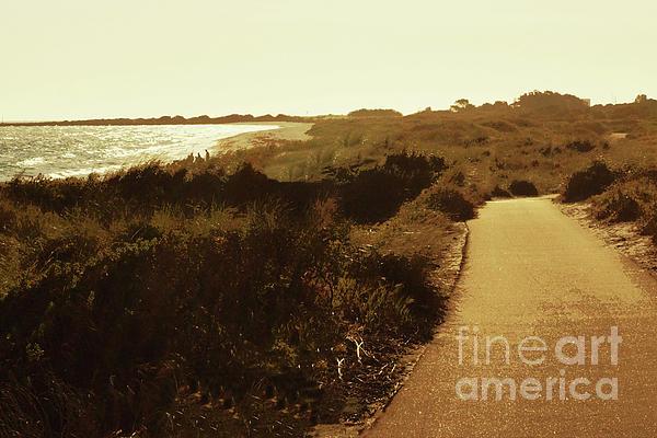 Cassandra Buckley - Walk along the Beach