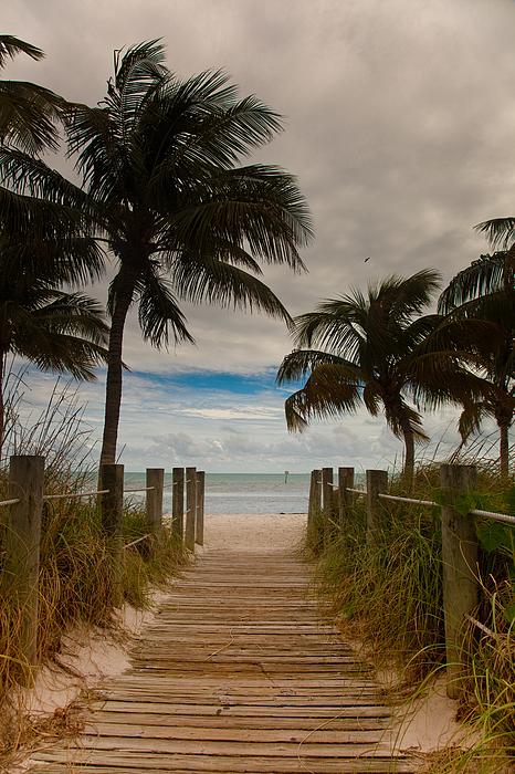Patrick  Flynn - Walking to the Beach