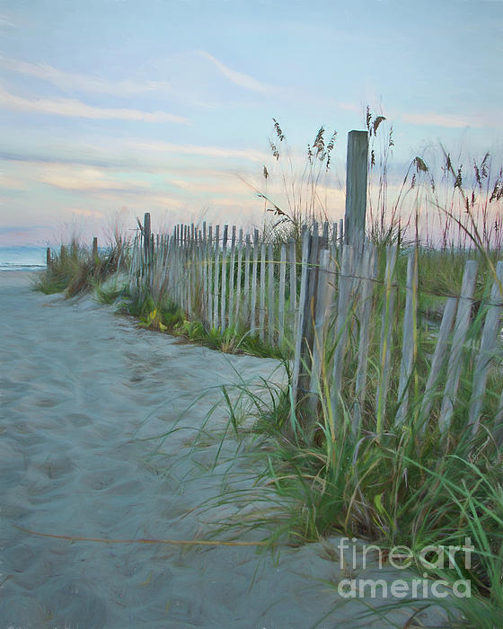 Michelle Tinger - Walkway to Beach