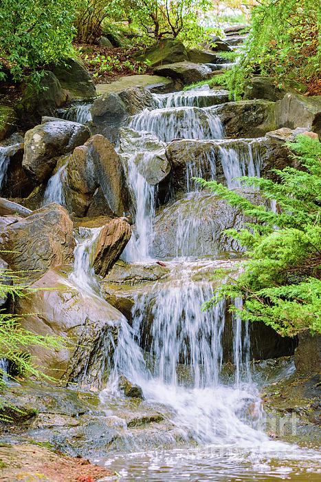 Viktor Birkus - Waterfall in the VanDusen Botanical Garden 1