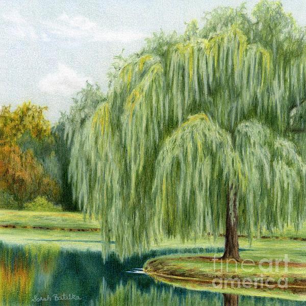 Sarah Batalka - Under The Willow Tree