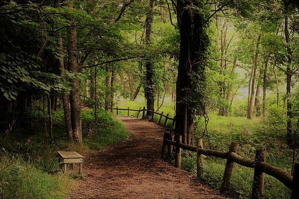 Deepa Sahoo - Welcoming Trail