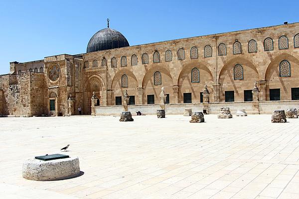Munir Alawi - Well at Al Aqsa Mosque